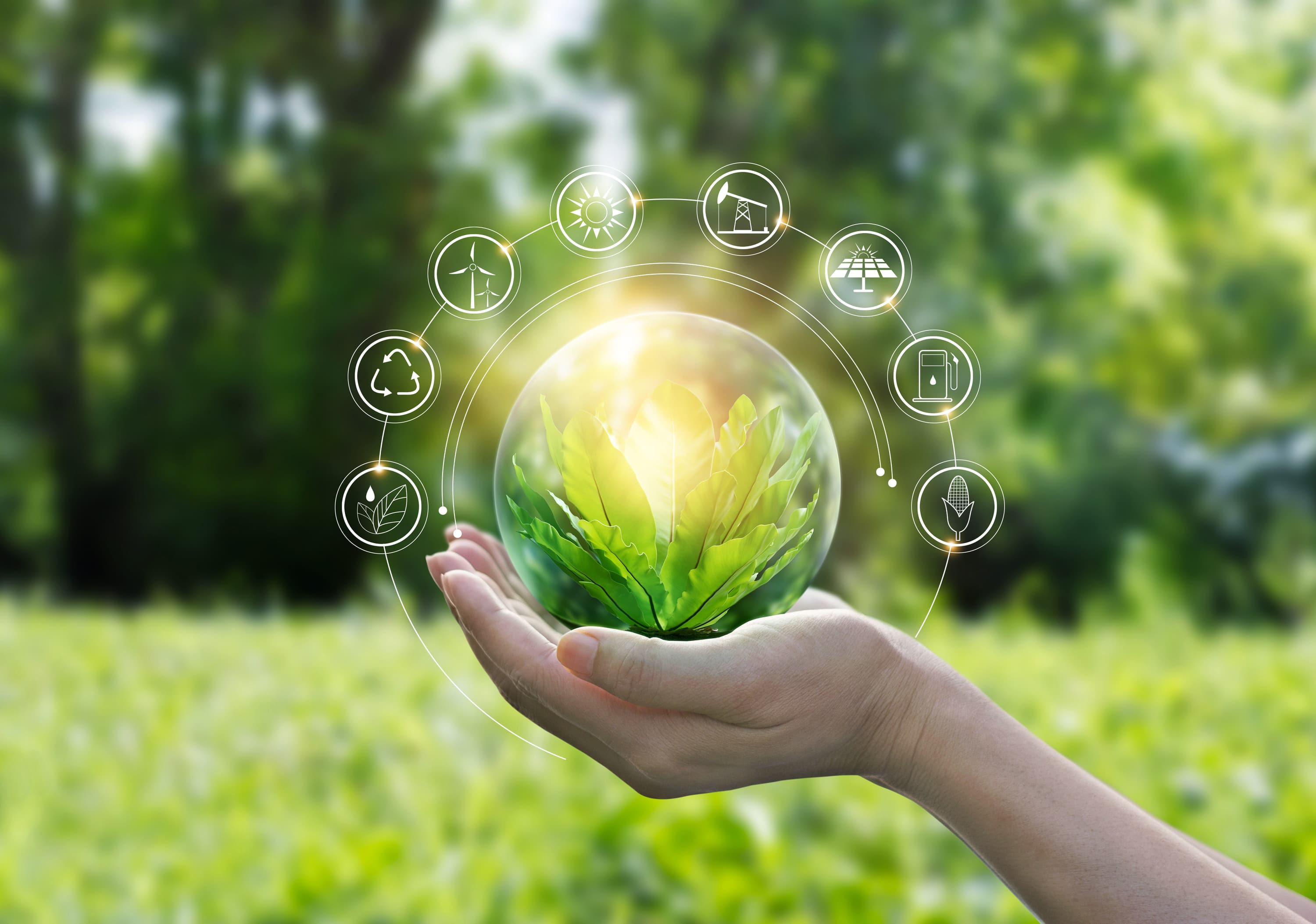 Sustainable development balances economic and environmental issues, and is key to humanity's future.