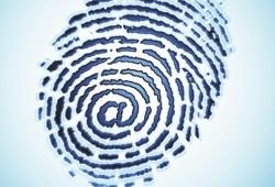 Vulnerabilidade em sites de empresas de antivírus 20081105174229