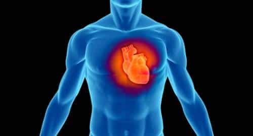 Saúde - Coração