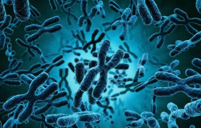 Cientistas alertam contra tecnologias de edição genética