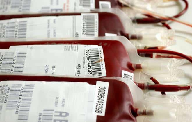 Sangue artificial será testado em humanos a partir de 2017