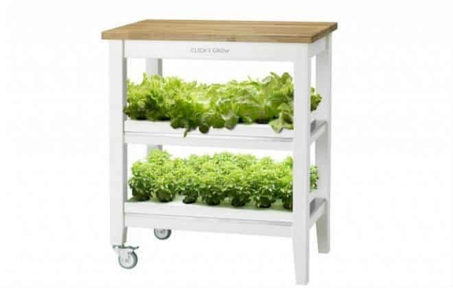Fazenda inteligente cultiva vegetais dentro de casa com 95% menos água