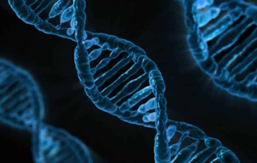 Cientistas realizam edição genética dentro do corpo humano pela primeira vez