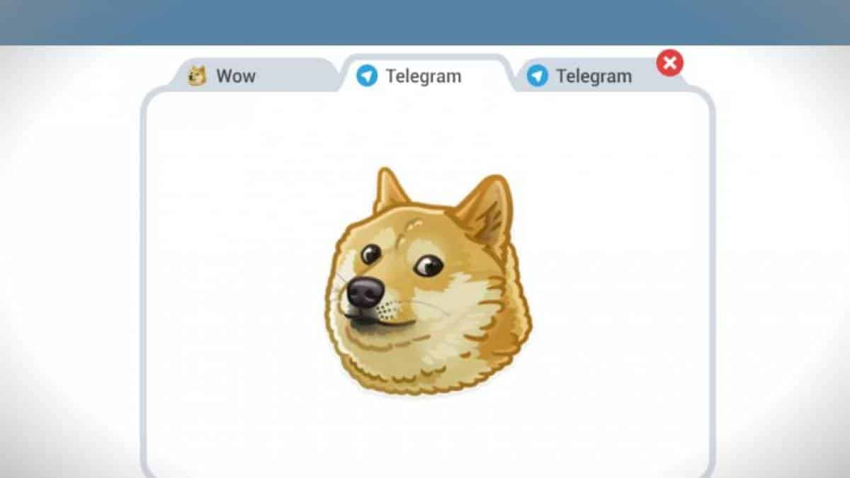 Telegram doge