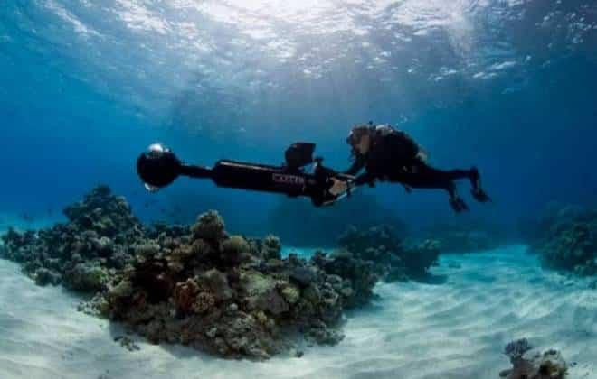 Google, Nasa e outros se unem para ajudar a salvar vida marinha australiana