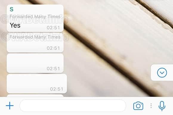 WhatsApp prepara função para conter o compartilhamento de correntes
