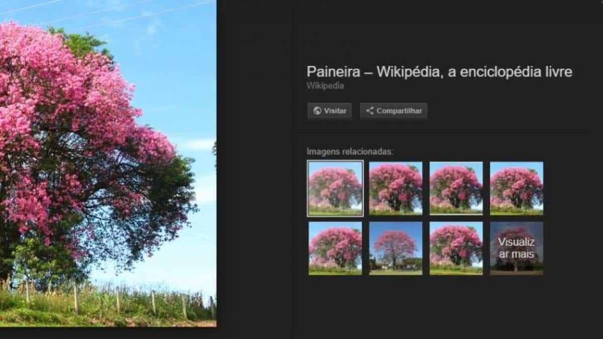 Google remove opção  Ver imagem  de resultados de busca e6fd4ea180b