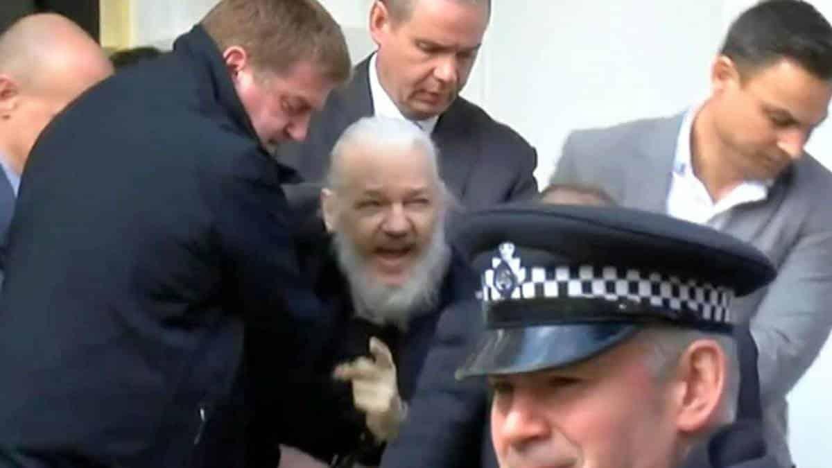 Resultado de imagem para julian assange