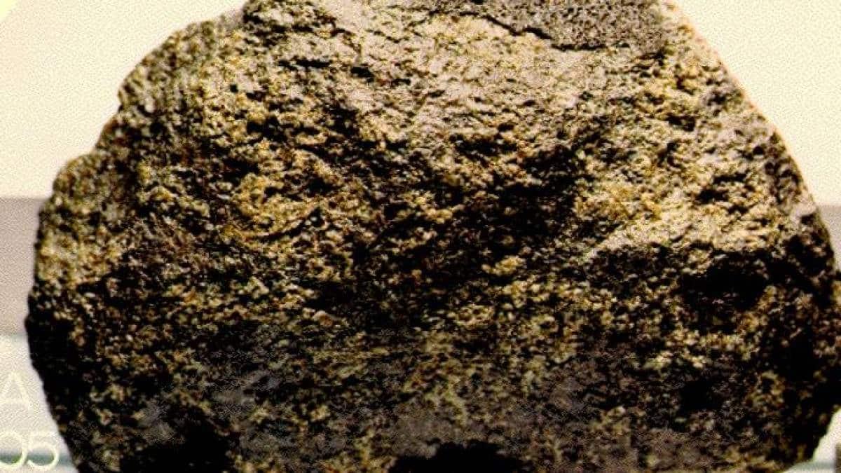 Meteorito ALH-77005