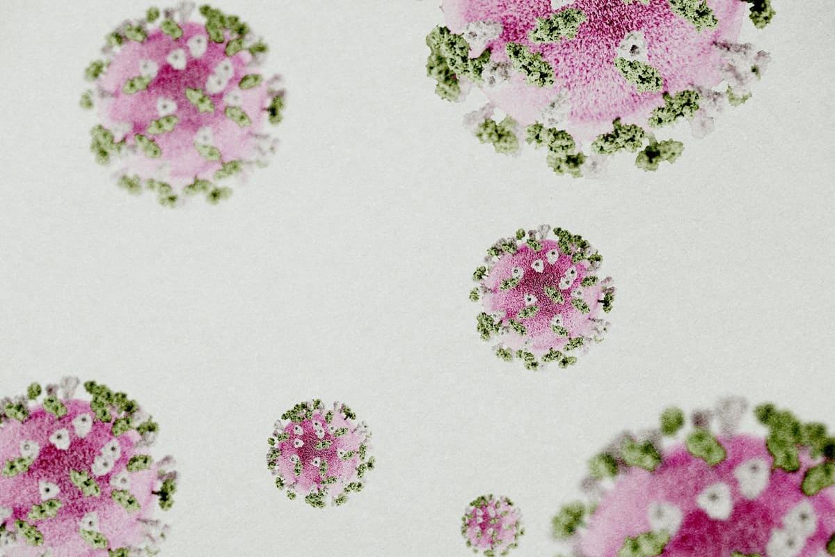 Medicamento baseado em anticorpos impede a contaminação pela Covid-19