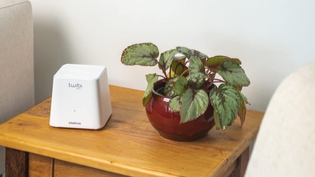 aparelho de wi-fi ao lado de uma planta sobre uma mesa